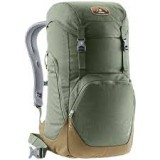 Рюкзак Deuter Walker 24L Khaki Lion (2608)